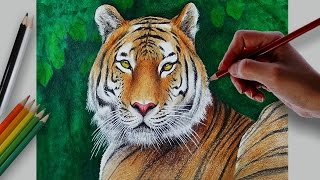 Drawing A Royal Bengal Tiger With Water Color and Colored Pencils  Drawn by using Prismacolor Premiere colored pencils and background with water colors .Time Lapse Drawing.Time taken around 4.30 hours.Background Music : Faith by Vibe Tracks.If you like my video please don't forget to subscribe.Thanks for watching.