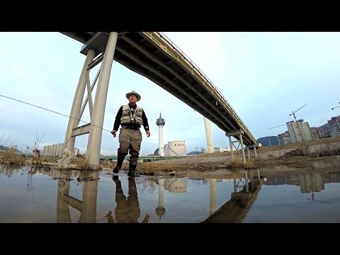 Fly fishing - Korea piscivorous chub - Thời lượng: 13 phút.