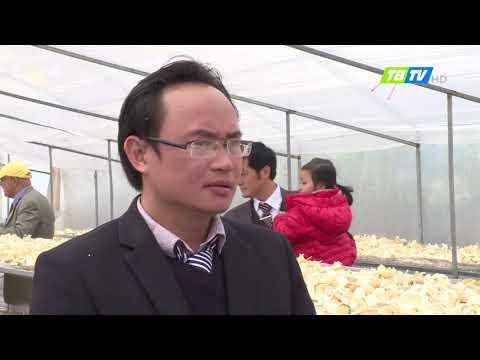 Nông nghiệp dược liệu công nghệ ca0