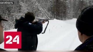 Губернаторская охота: чиновник расправился с медведем на глазах у внуков — Россия 24