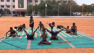 Sports day – Yoga Video