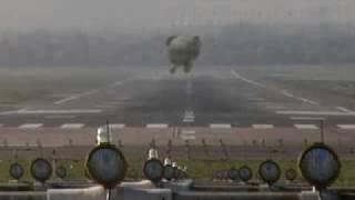 Elefante volador. Maussan tiene razon - IFAW 2009