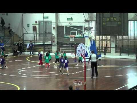 Partita Boston Celtics contro i Bob Kate