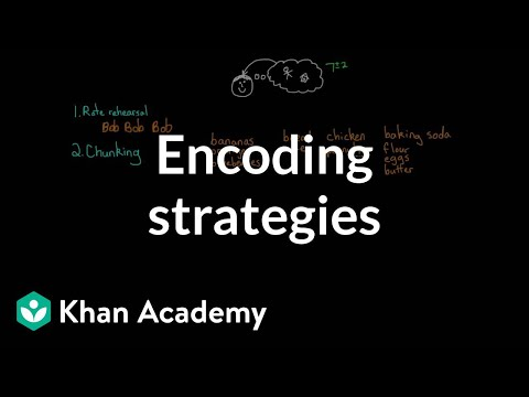 Encoding strategies   Processing the Environment   MCAT   Khan Academy