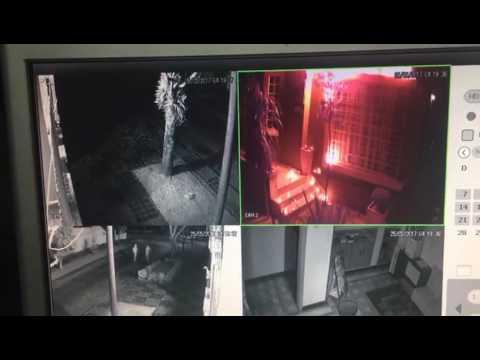 Sede do PT é incendiada em ataque com coquetéis molotov em Curitiba