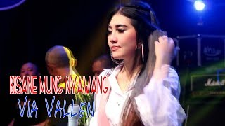 Download Lagu Via Vallen - Bisane Mung Nyawang [OFFICIAL] Mp3