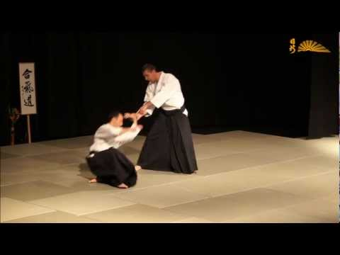 Explanation about aikido