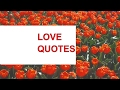 Love Quotes: Best Notable Saying about Love, Nice and Beautiful Love Quotes