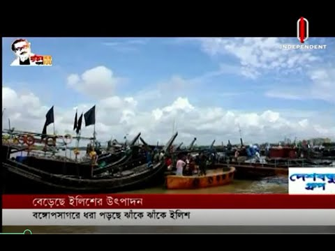 Traders hopes the production of Hilsa will surpass all the records (06-08-20) Courtesy:IndependentTV
