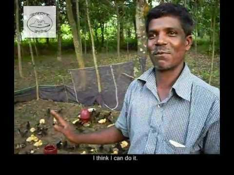 Md. Tofazzal Hossain starts his own poultry farm