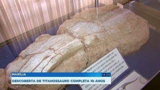 Descoberta que colocou Marília no cenário mundial da paleontologia completa 10 anos