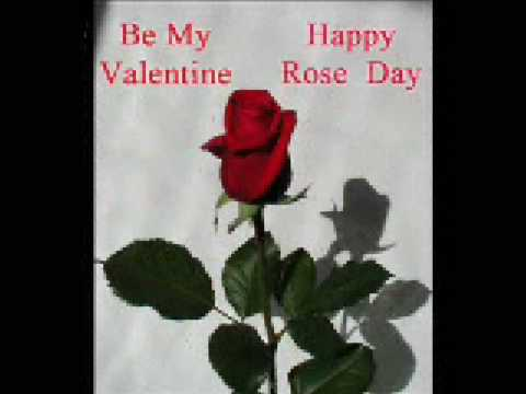 Happy Rose Day - 2015