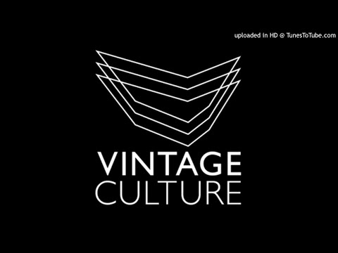 Best Of VINTAGE CULTURE: MIX (Josh Childz)