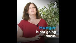World hunger is still not going down after three years and obesity