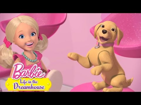 Business is Barking | Life In The Dreamhouse | Barbie