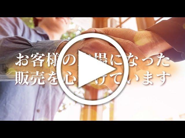 ALL-STAR(オールスター)の動画