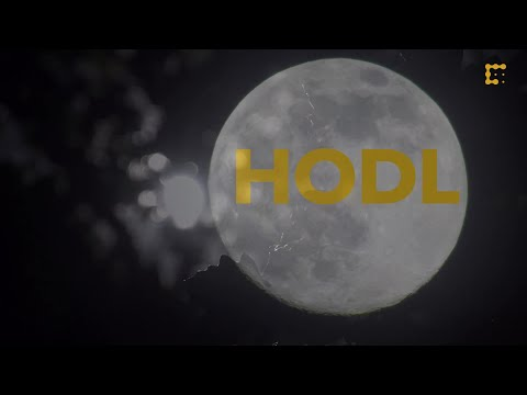 The History of HODL & Bitcoin's Best Worst Trader video