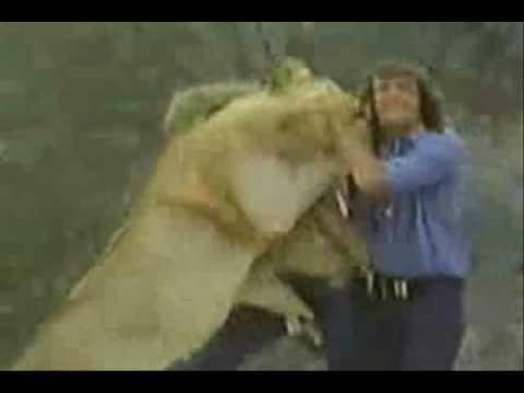 ataque de leon a dos personas