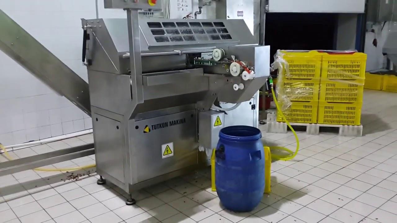 Olive Pitting and Pimento Stuffing Machine