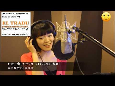 Traductor Interprete Chino Español En Shanghai Beijing