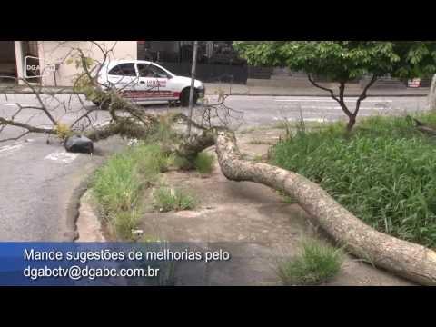 Moradores cobram manutenção de praça na Vila Eldizia;