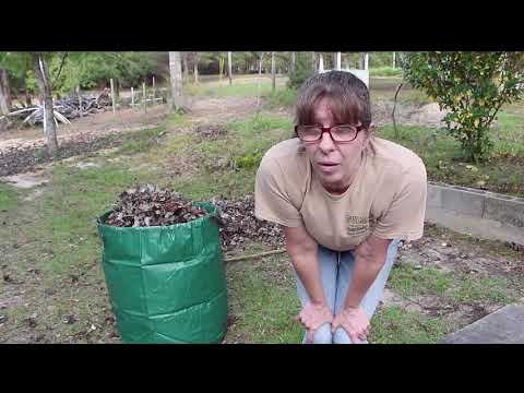 Mulching with Leaves // Garden Waste Bags