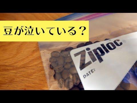 ジップロックにコーヒー豆を保管するとどうなるか ペットボトルに保管した豆と比較してみた