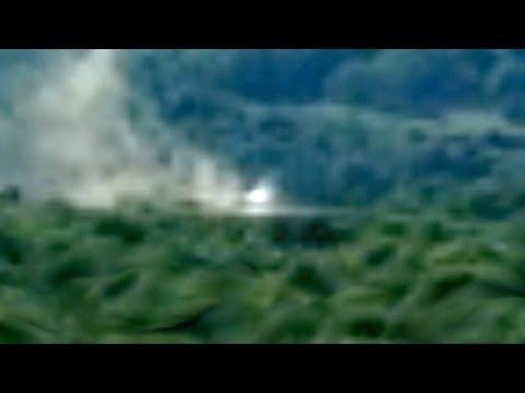 la foresta brucia a causa di una nave spaziale