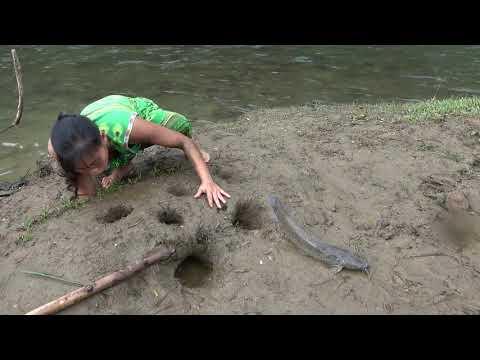 Primitive Life - Unique Fishing Catch Catfish in Mud Hole - Meet Fish Underground