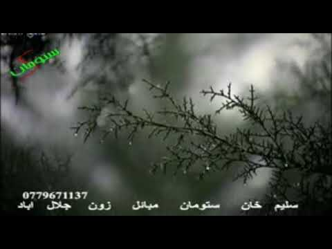 Video لیوانو دره 207 برخه download in MP3, 3GP, MP4, WEBM, AVI, FLV January 2017