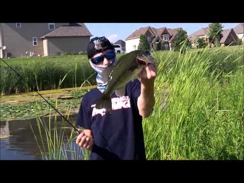 Illinois- Pond Bass Fishing- Huge Bass! w/ HookSetAngling