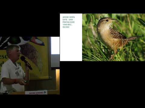 Window On Nature – 10/26/2017 – Mixing Birding and Bird Photography (and Living to Tell About It!) – Clay Taylor