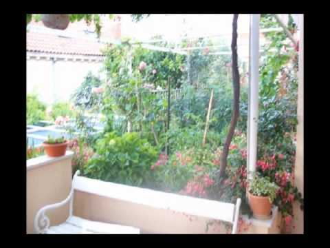 Video Anna Guesthousesta