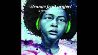 Strange Fruit Project  - Bright Lights