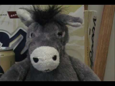 2011 Super Bowl Commercial with Donkey