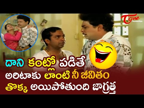 Brahmanandam Comedy Scenes Back To Back | Telugu Comedy Scenes | NavvulaTV