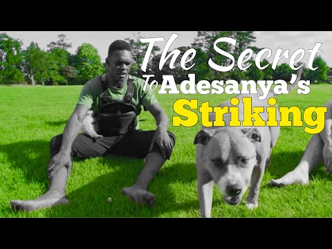 The Secret to Israel Adesanya's Striking: Episode 1