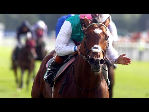 frankel - Frankel wins the 2012 Juddmonte International in style. After a step up to 10 furlong people were questioning his ability to stay. He answered everyones ques...