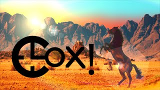 Clox! - 4 Wild Horses [ Lyric video ]