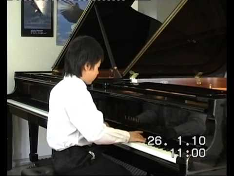 A Compilation of Child Prodigies Across Asia picture