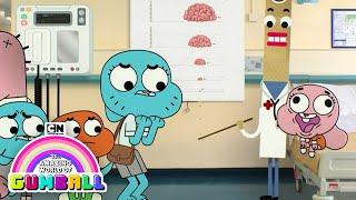 Video The Amazing World of Gumball | The Brain | Cartoon Network MP3, 3GP, MP4, WEBM, AVI, FLV Juni 2018