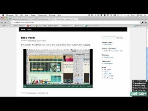 A Crash-Course in WordPress Shortcode Creation