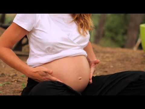 pourquoi eviter les chats pendant la grossesse