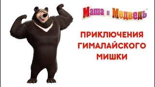 Video Маша и Медведь - Приключения Гималайского Мишки 🐻 Все серии подряд! 🎬 MP3, 3GP, MP4, WEBM, AVI, FLV Agustus 2018