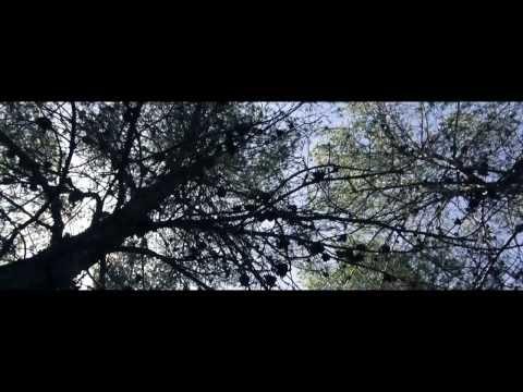 """Fatt transmite buenas vibraciones con el clip de """"Brindis"""""""