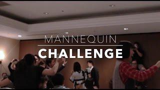 Freecom Mannequin Challenge