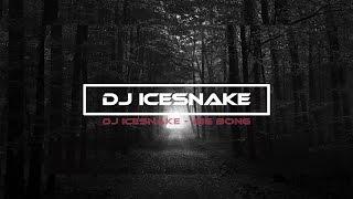 Download Lagu DJ IceSnake - Big Bong Mp3