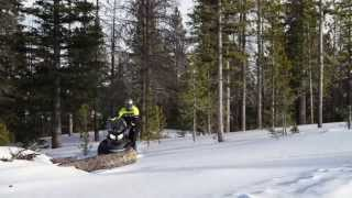 7. 2016 Ski-Doo Skandic and Tundra