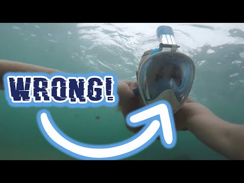 1 Thing Wrong With The Seaview 180 Full Face Snorkel Mask