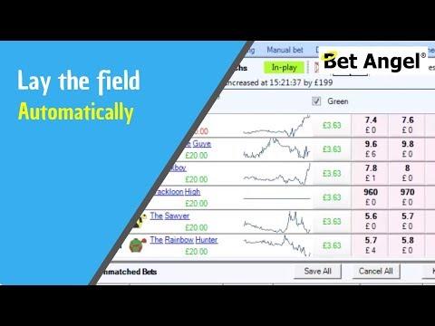 Lay trading strategies